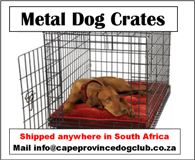 Plastic and Metal Dog Crates